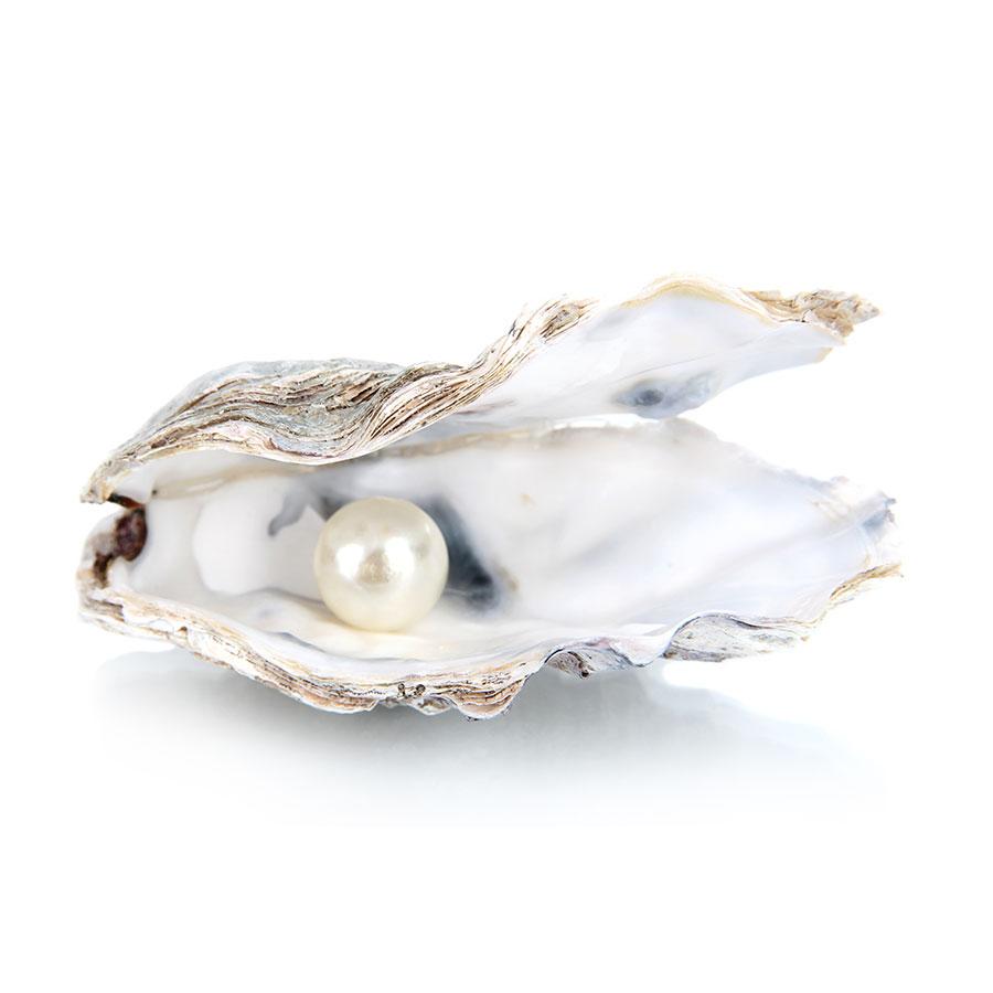Perle d'eau sur fond blanc